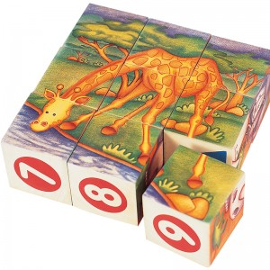 S413 Safari Cubes